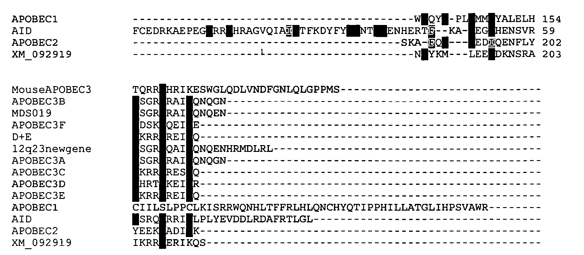 Figure US20050112555A1-20050526-P00003