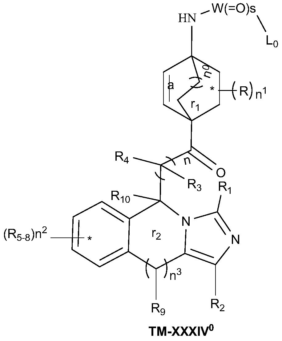 Figure PCTCN2017084604-appb-000066