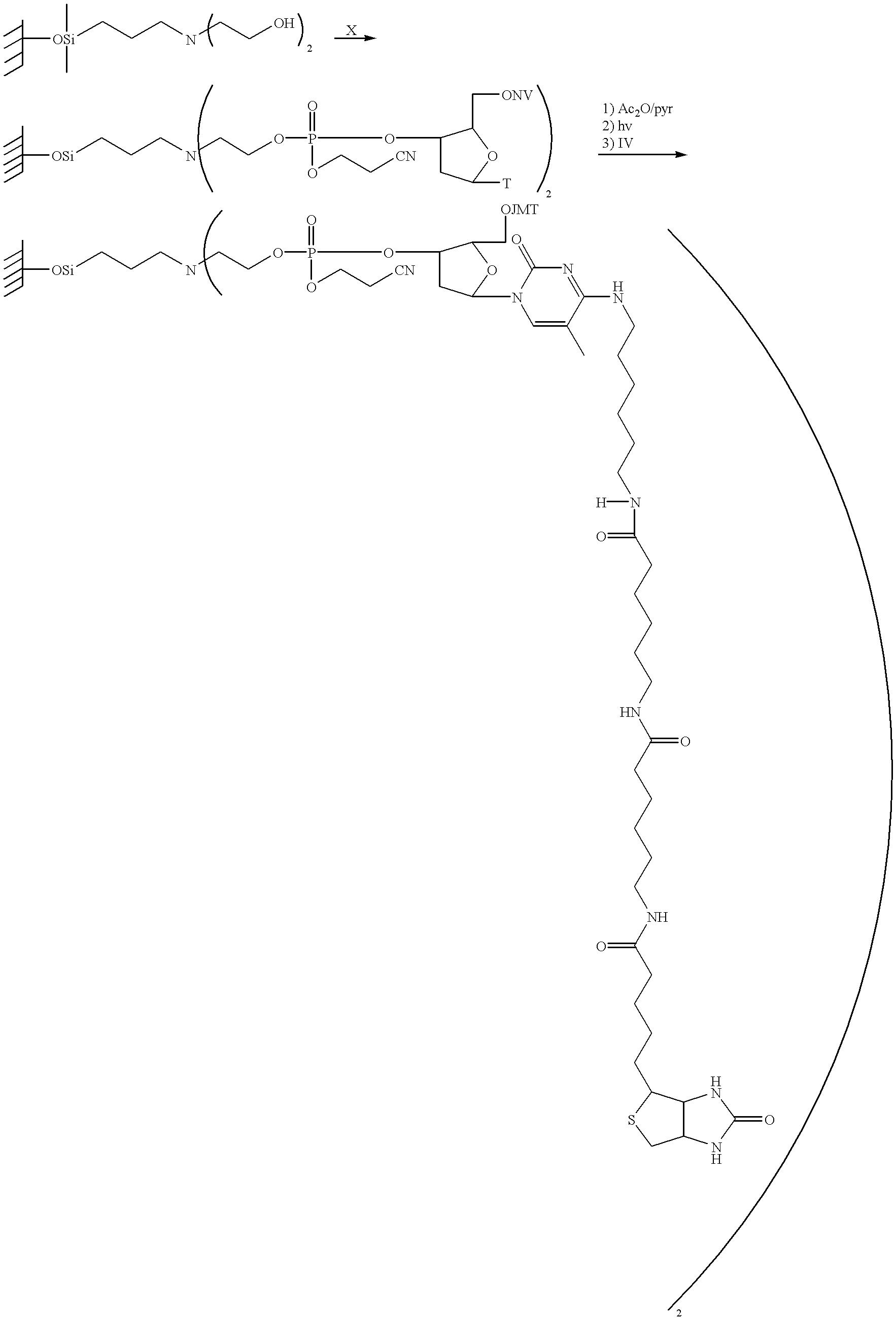 Figure US06416952-20020709-C00039