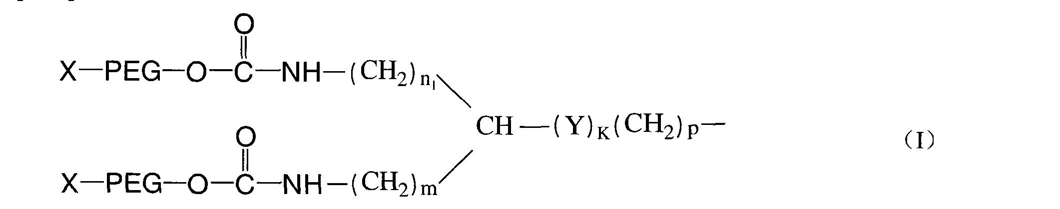Figure CN101125207BD00041