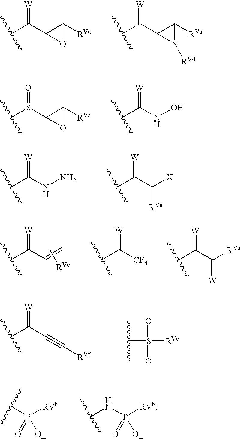 Figure US20040072849A1-20040415-C00084