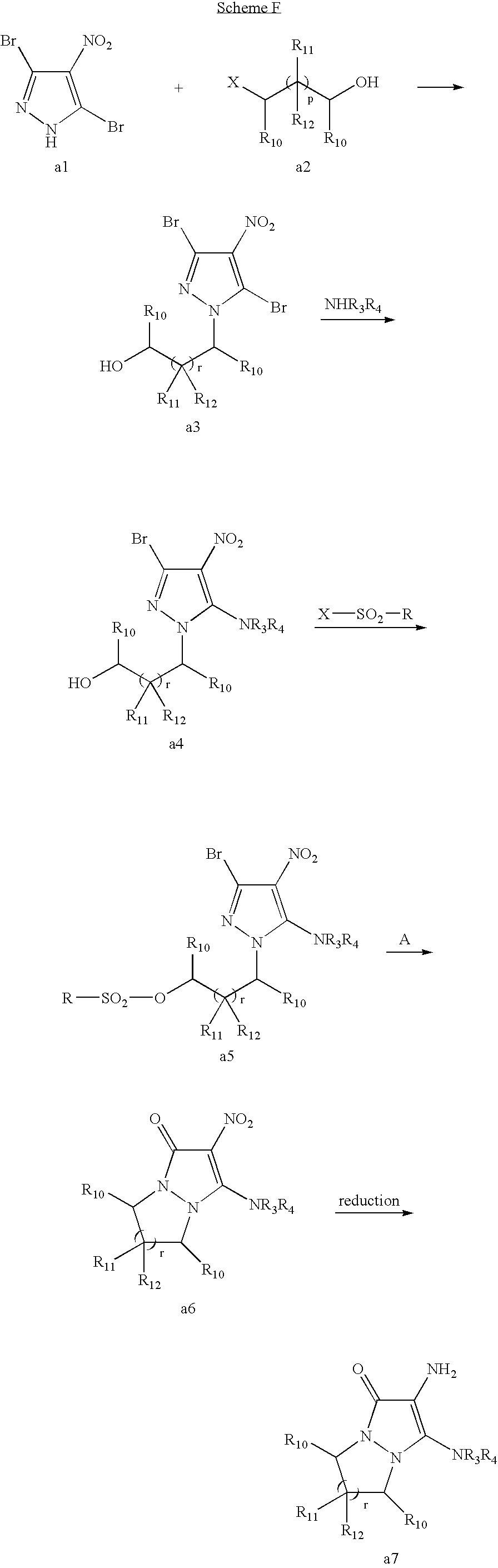 Figure US07582121-20090901-C00052