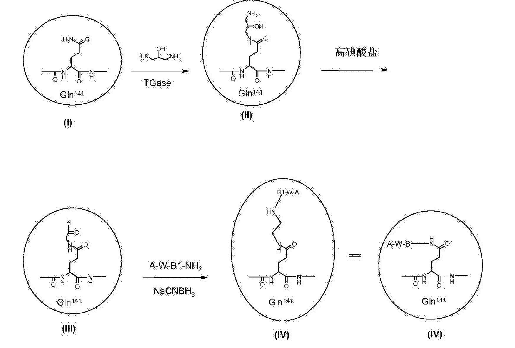 Figure CN103002918BD00661