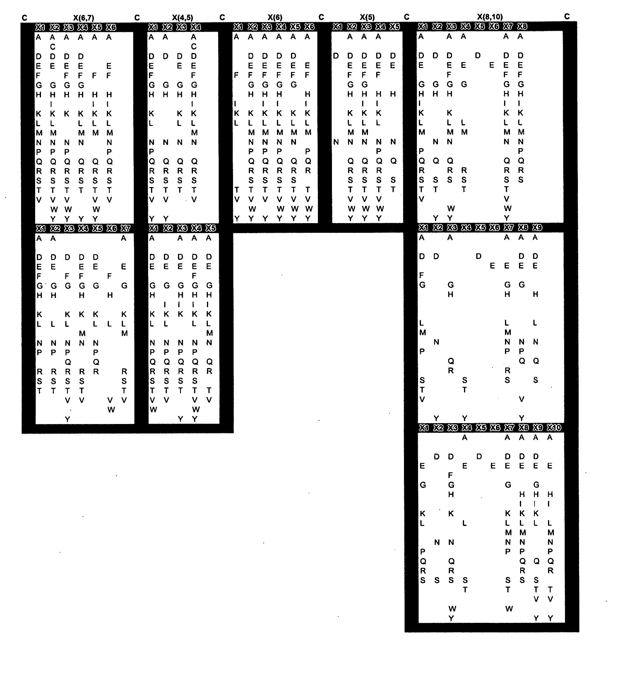 Figure US20050053973A1-20050310-P00006