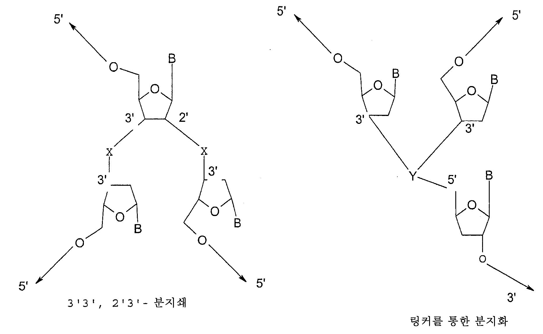 Figure 112007014513319-pct00003