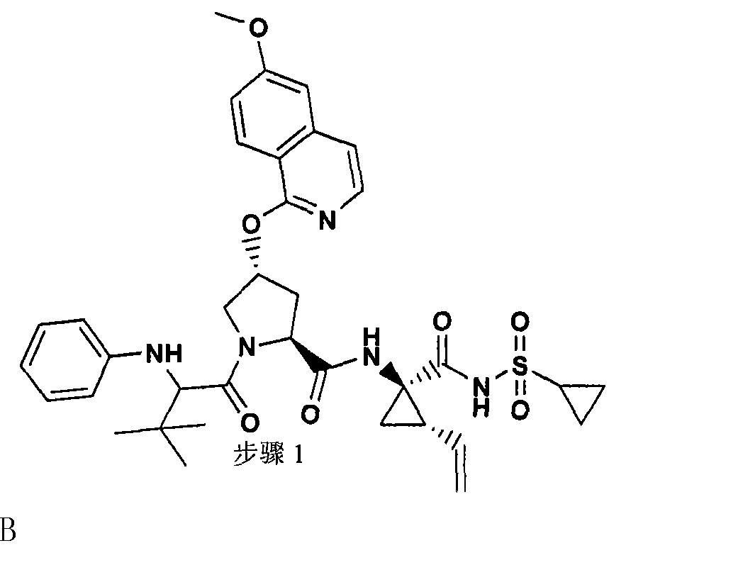 Figure CN101541784BD00811