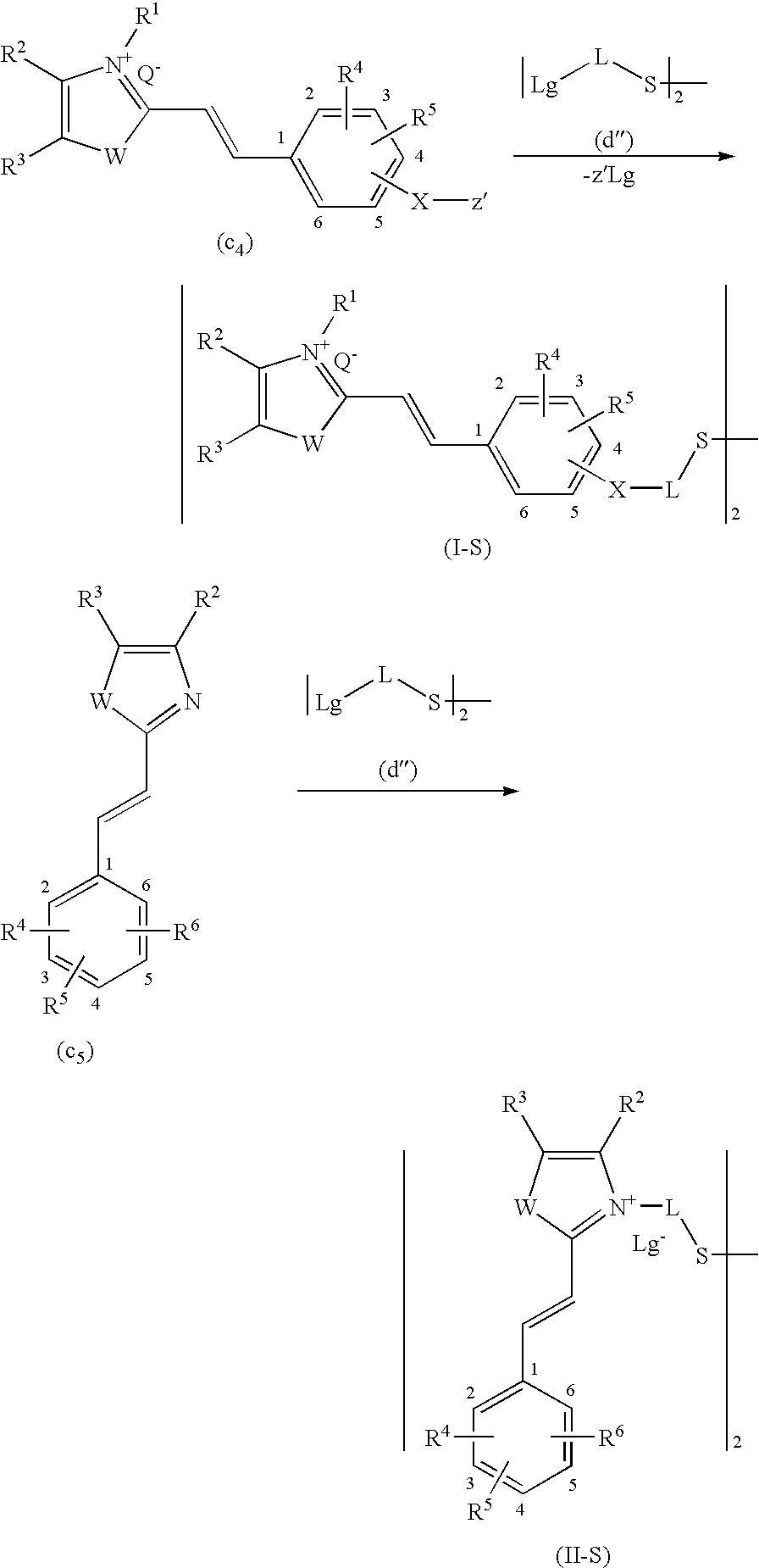 Figure US20090211038A1-20090827-C00030