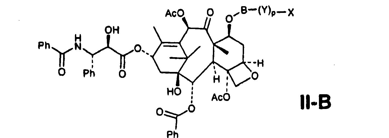 Figure CN101019024BD00071