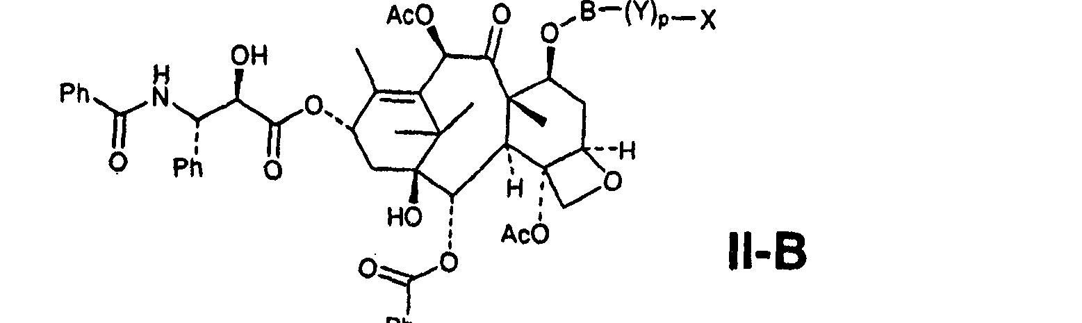 Figure CN101019024BC00023