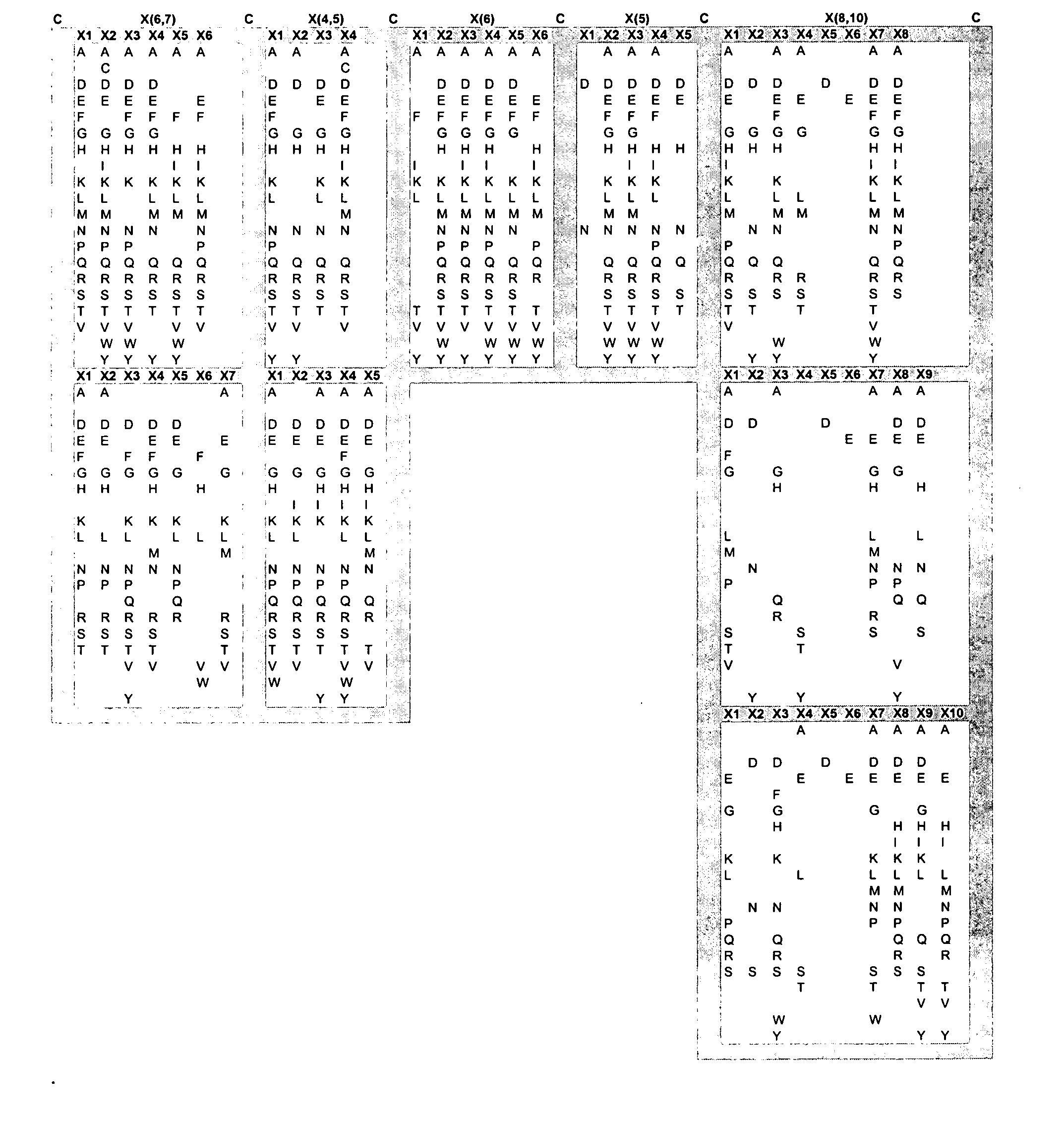 Figure US20050053973A1-20050310-P00001