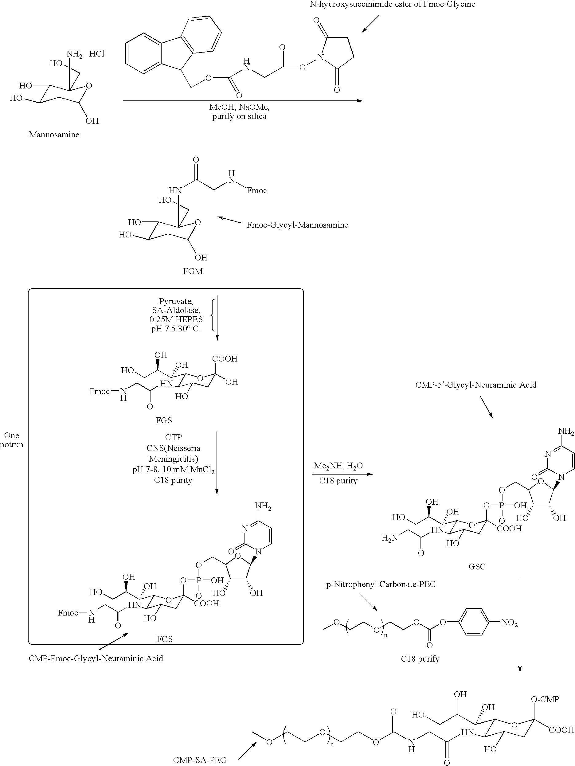 Figure US20090048440A1-20090219-C00007