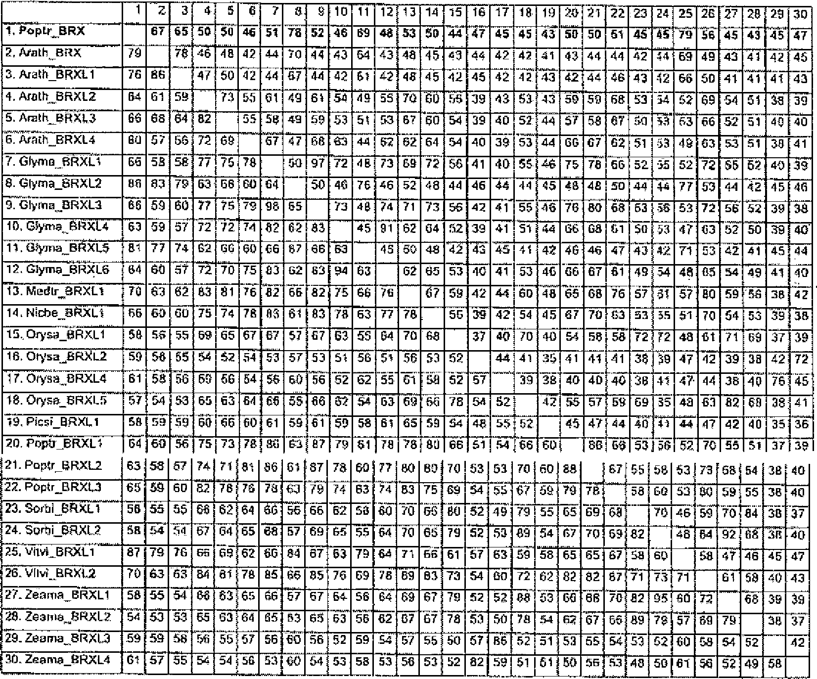 Ungewöhnlich Gemeinsame Kernarbeitsblätter Standards Mathe 4Klasse ...