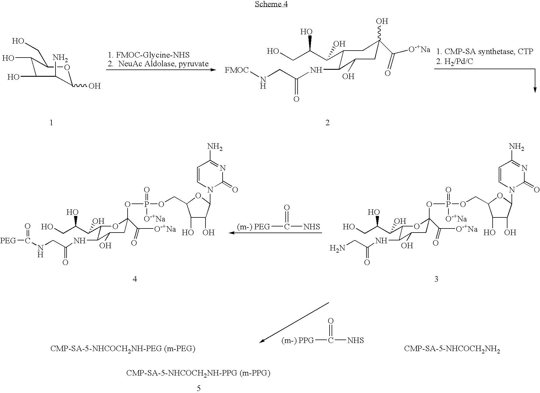 Figure US20080242846A1-20081002-C00028