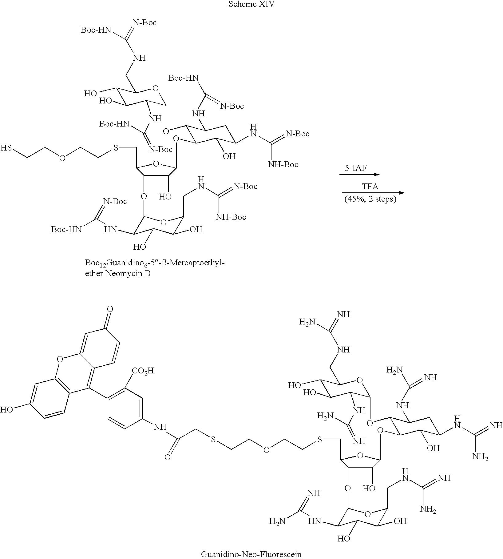 Figure US08071535-20111206-C00018