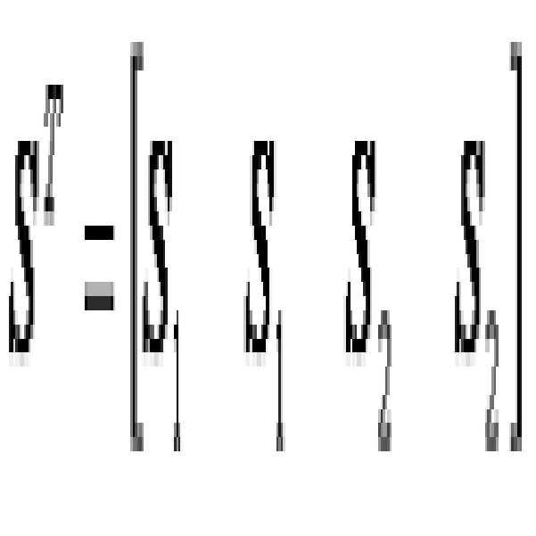 Figure 112007071118740-pat00048