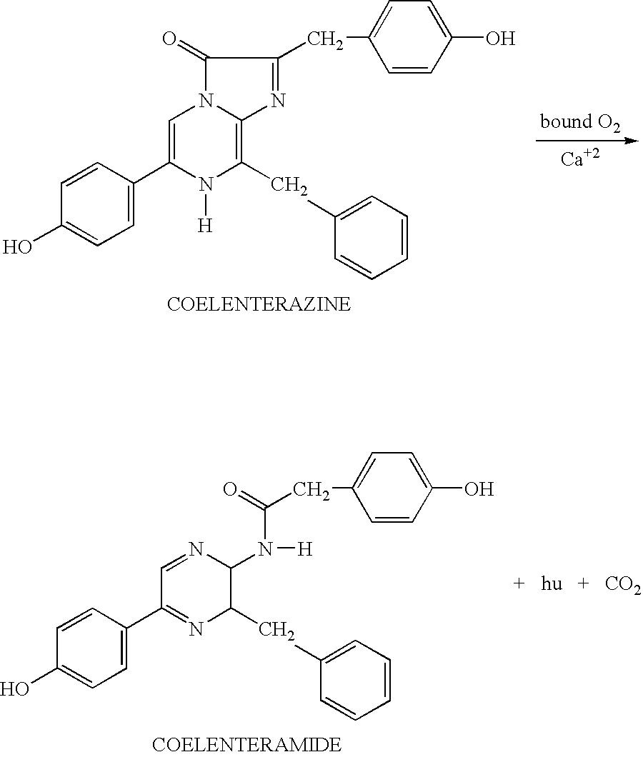 Figure US20060053505A1-20060309-C00003
