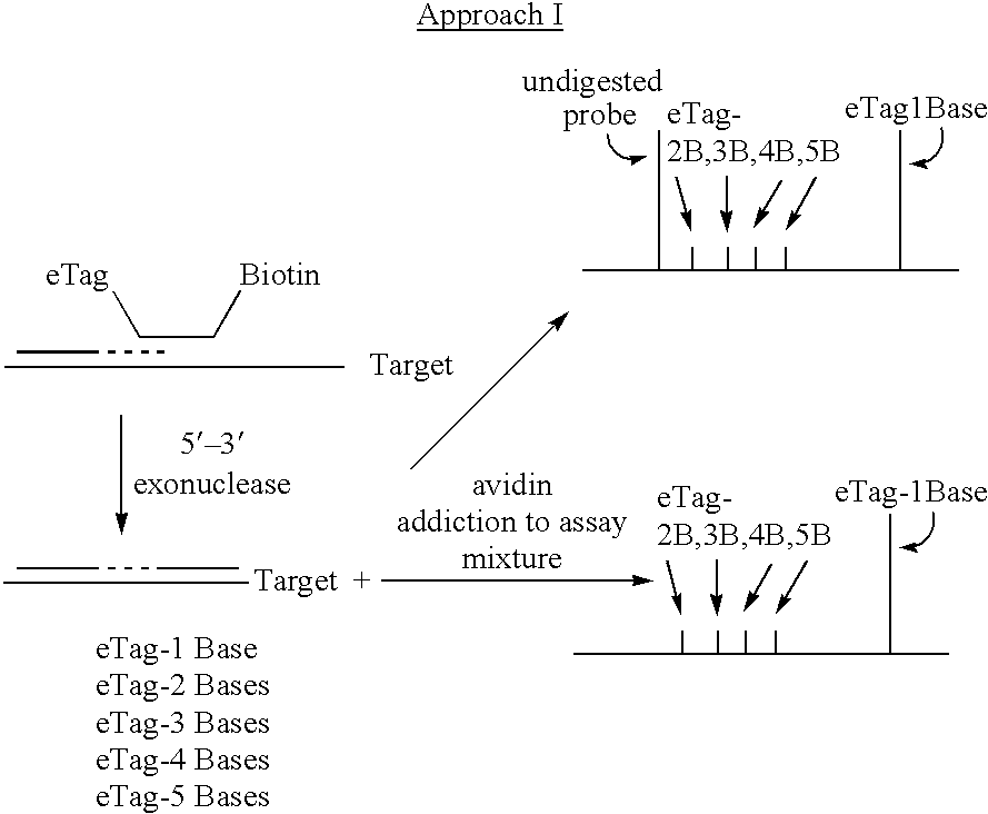 Figure US06514700-20030204-C00072