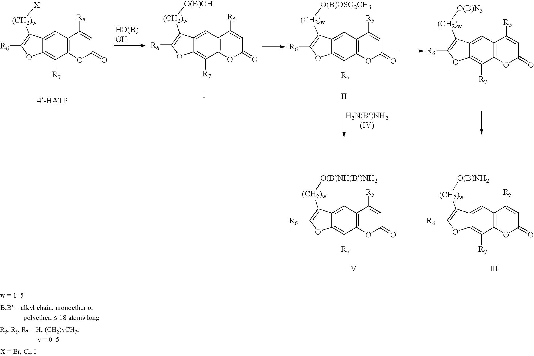 Figure US06686480-20040203-C00002