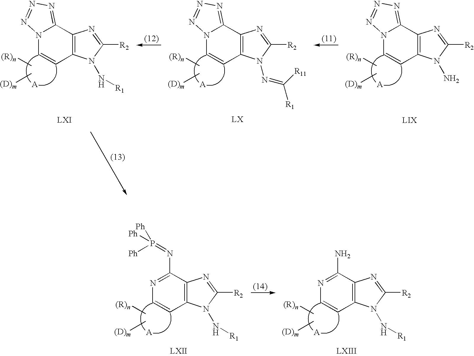 Figure US20090270443A1-20091029-C00070