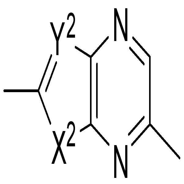 Figure pct00244