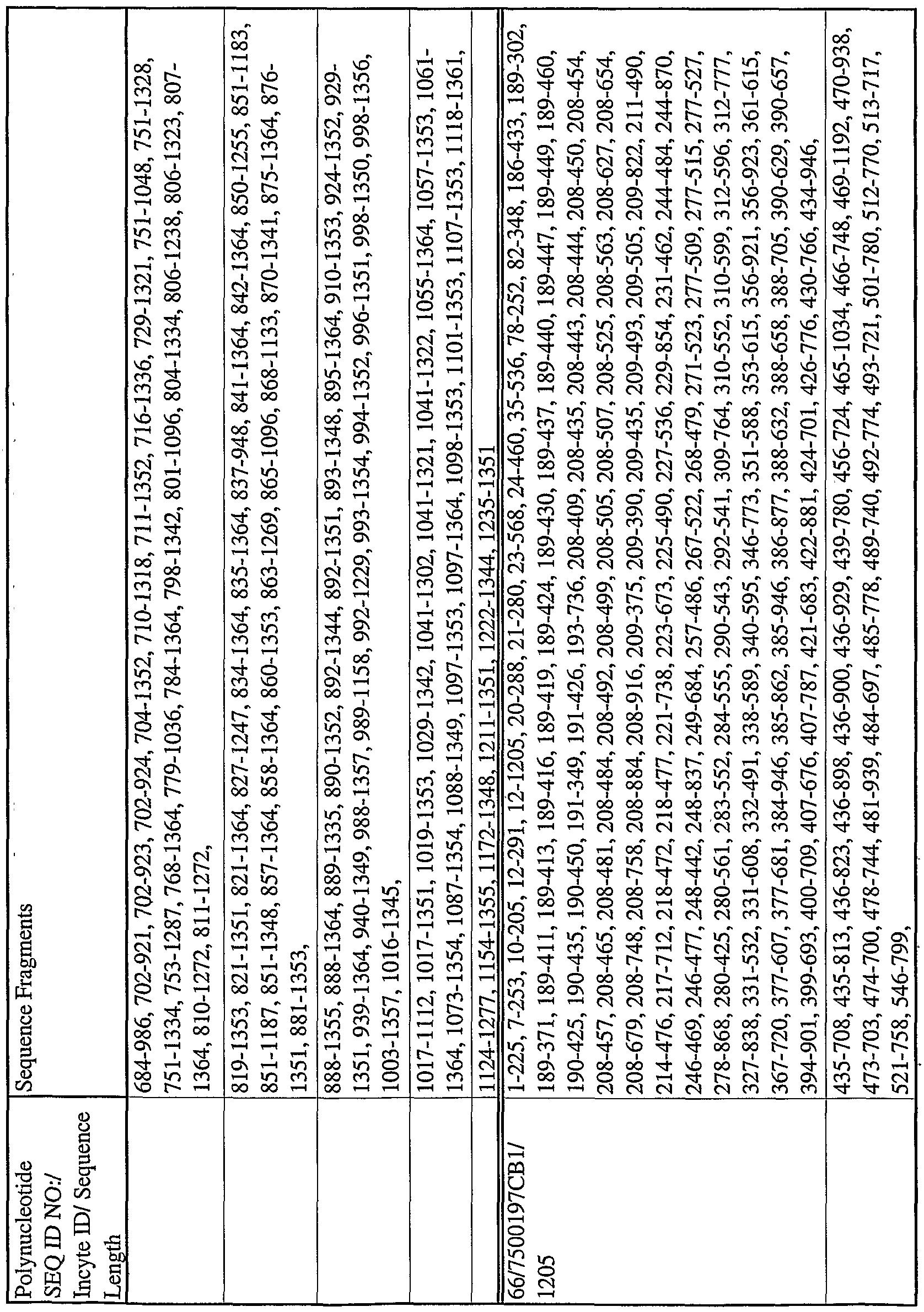 300 PCS GRAYISH BONE ROUND BEADING BEADS 6MM #T-396