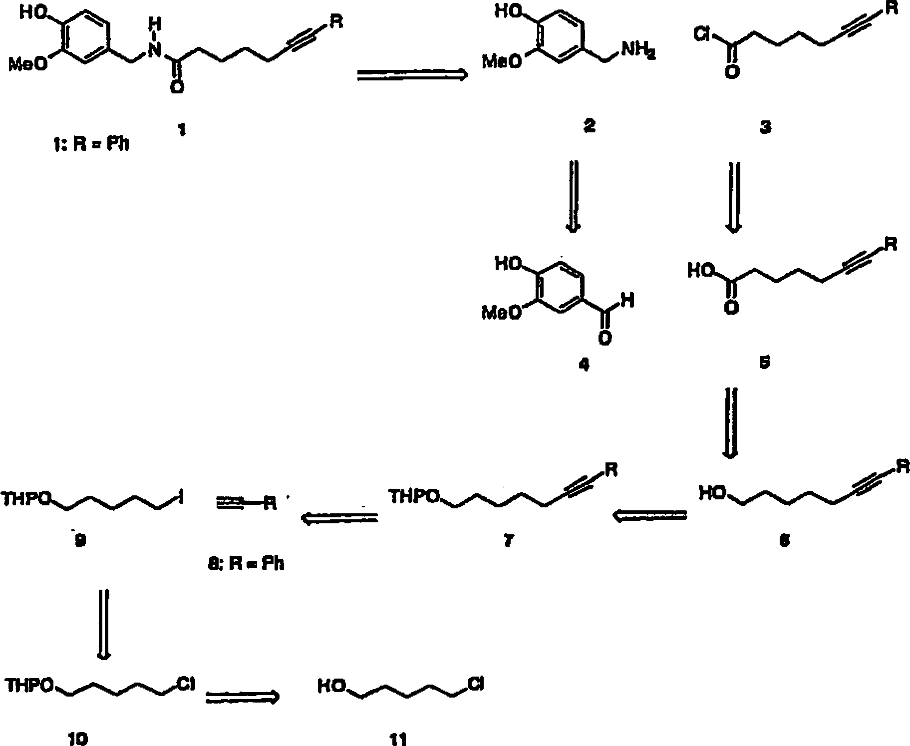 DE602004010164T2 - Capsaicin derivatives and their