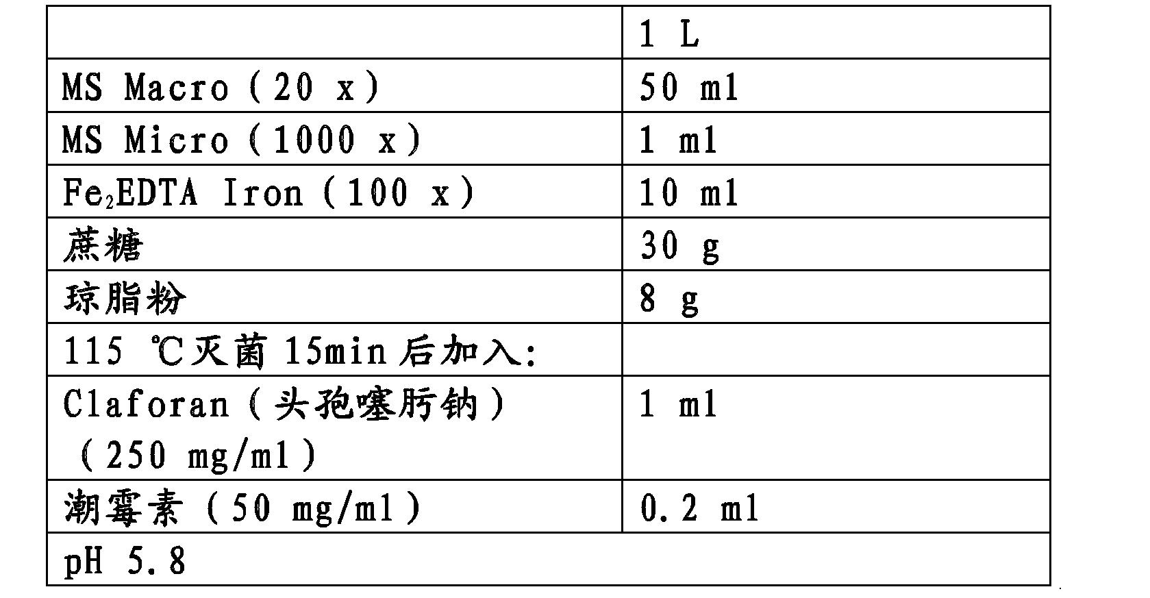 Figure CN102146391BD00202