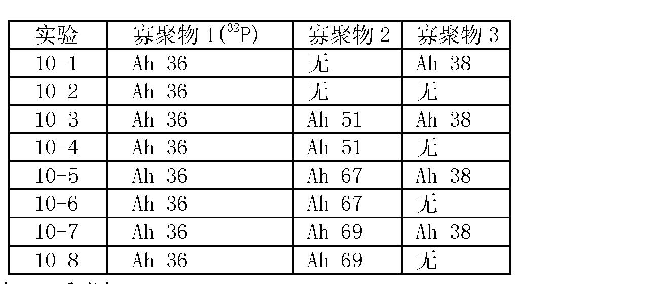 Figure CN101006177BD00391