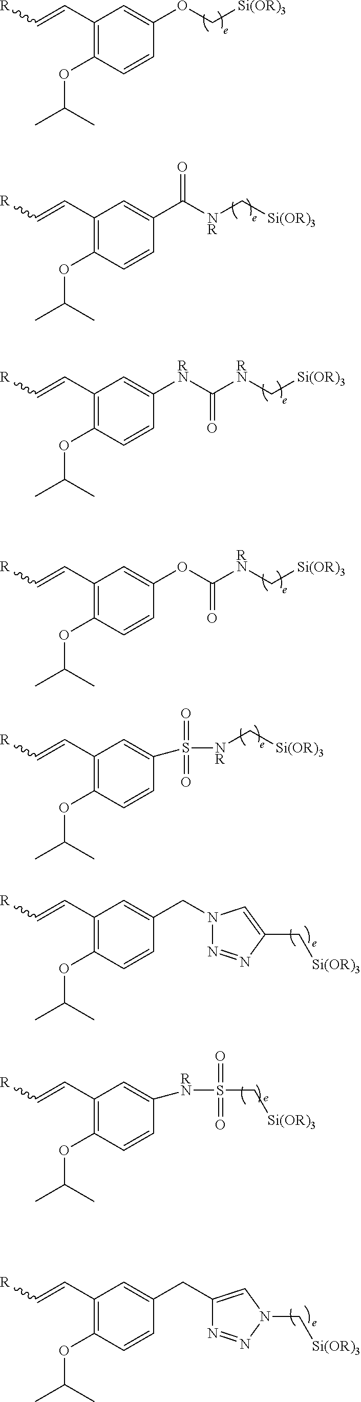 US20150166767A1 - Storage stable adhesion promoter
