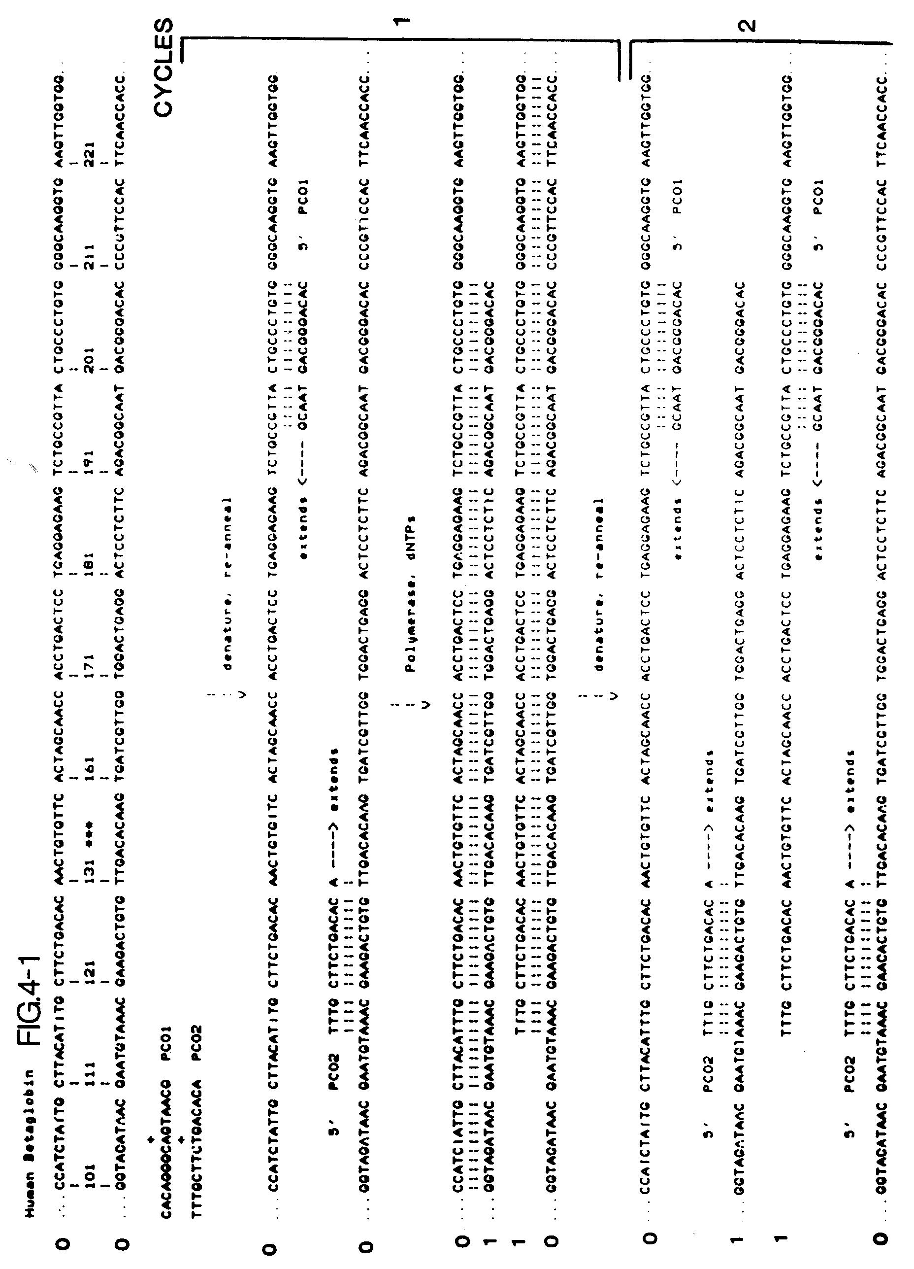 Unico FLD BIAS TAPE OYSTER-Fold XYD