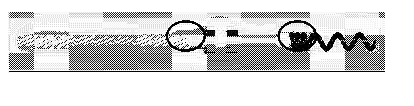 Figure US20070276458A1-20071129-P00014