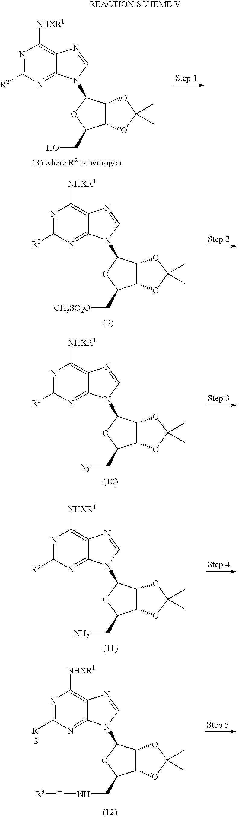 Figure US07696181-20100413-C00008