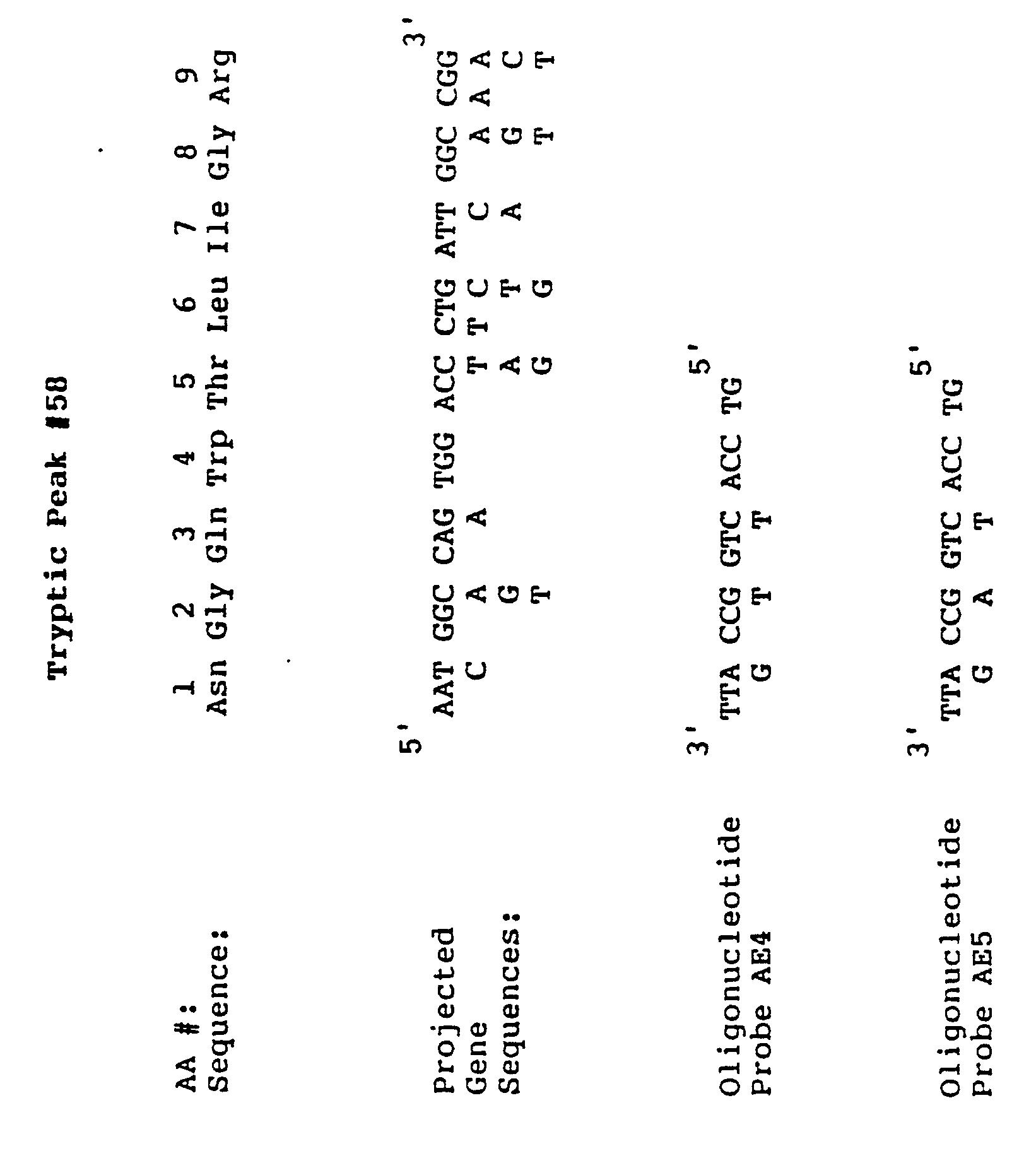 Peptidylglycine alpha-amidating monooxygenase antibody titers