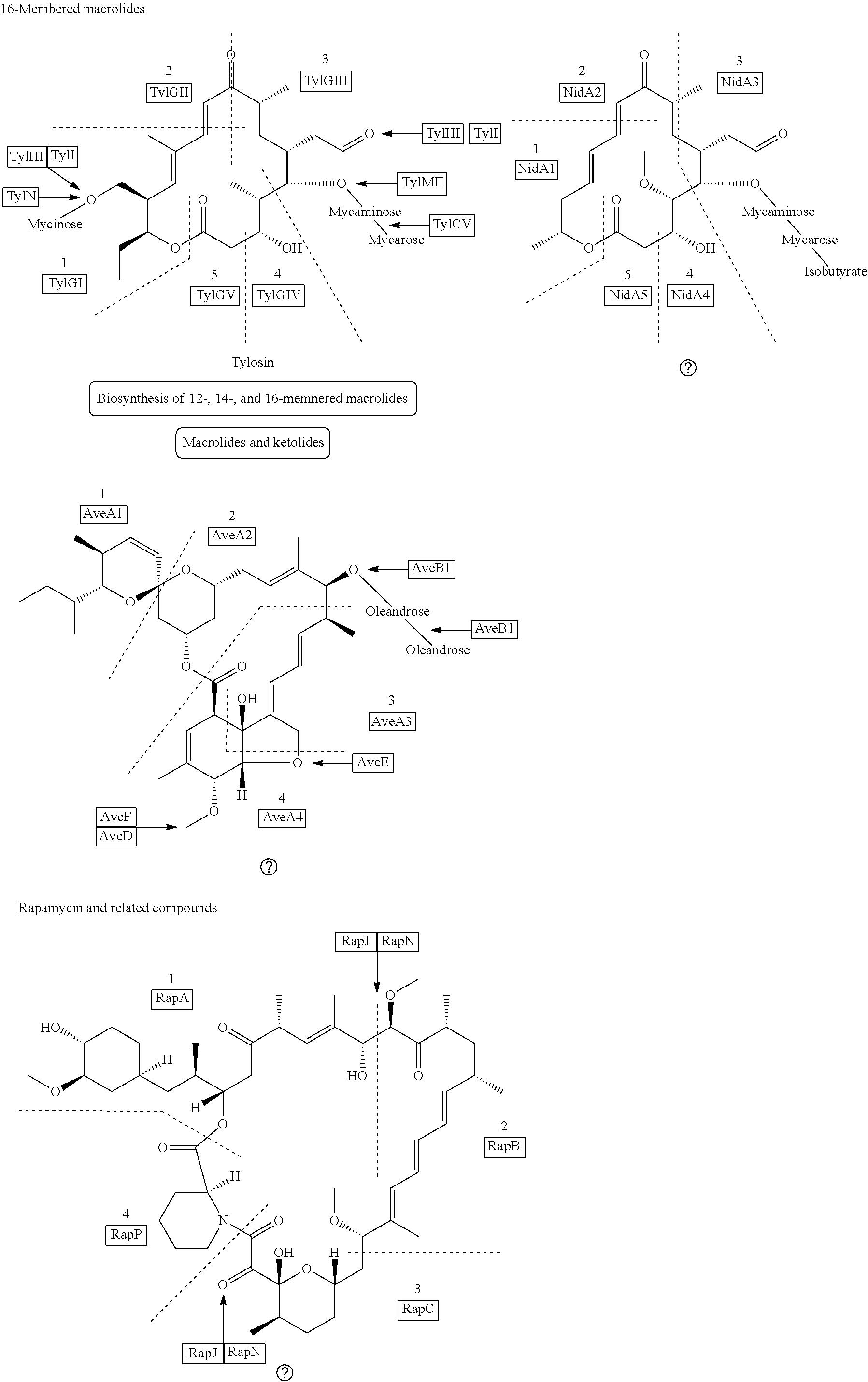 Us20120094358a1 Processing Biomass Google Patents Liquid Ring Vacuum Pump Diagram Closed Loop Butane Extraction System