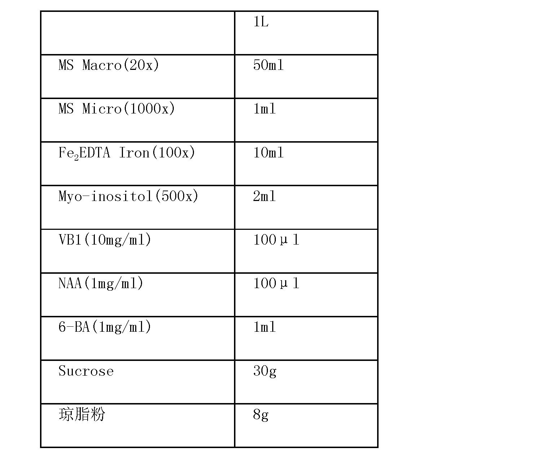 Figure CN102146392BD00202