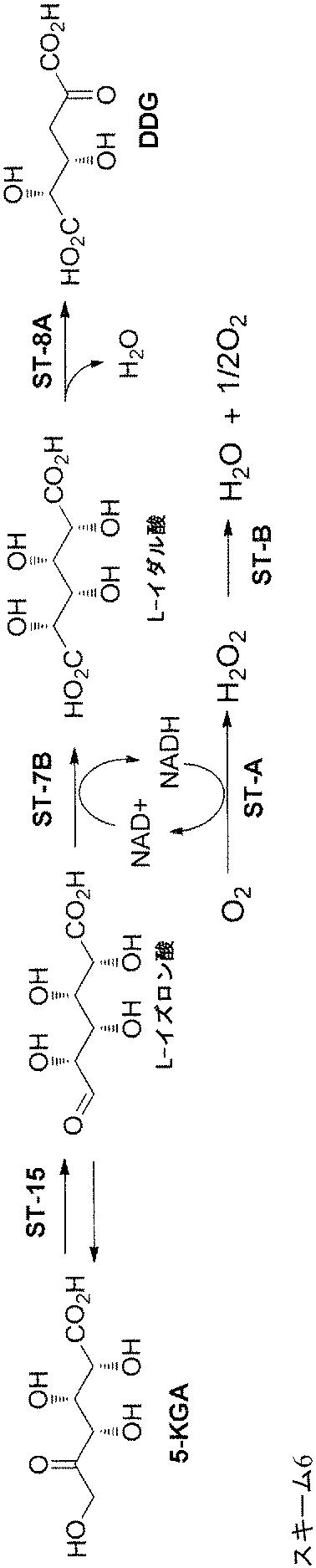 JP2015536641A - 化学物質およびその誘導体を生成するための組成物 ...