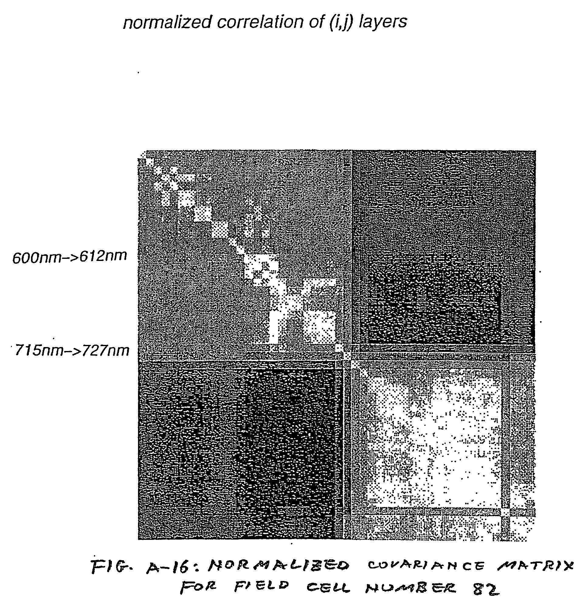 Figure US20070080851A1-20070412-P00014