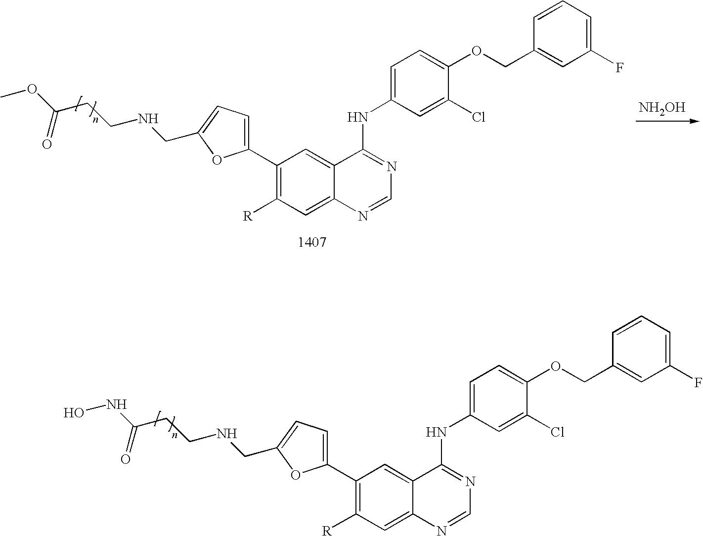 Figure US20090111772A1-20090430-C00238