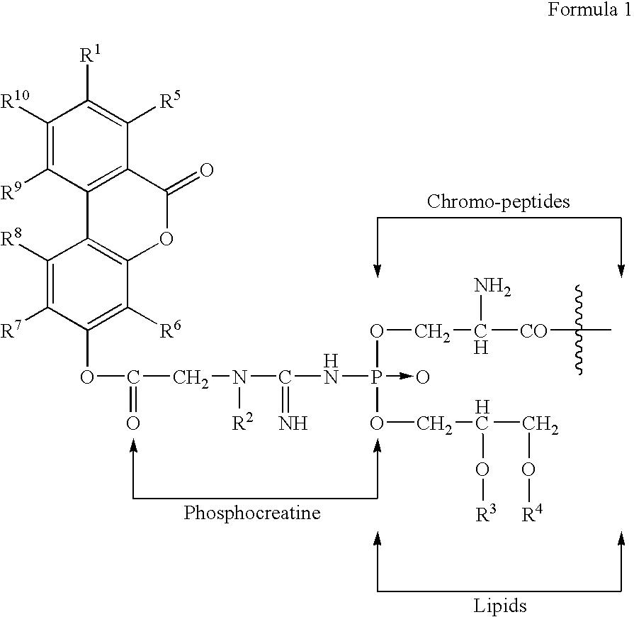 Figure US20050245434A1-20051103-C00002