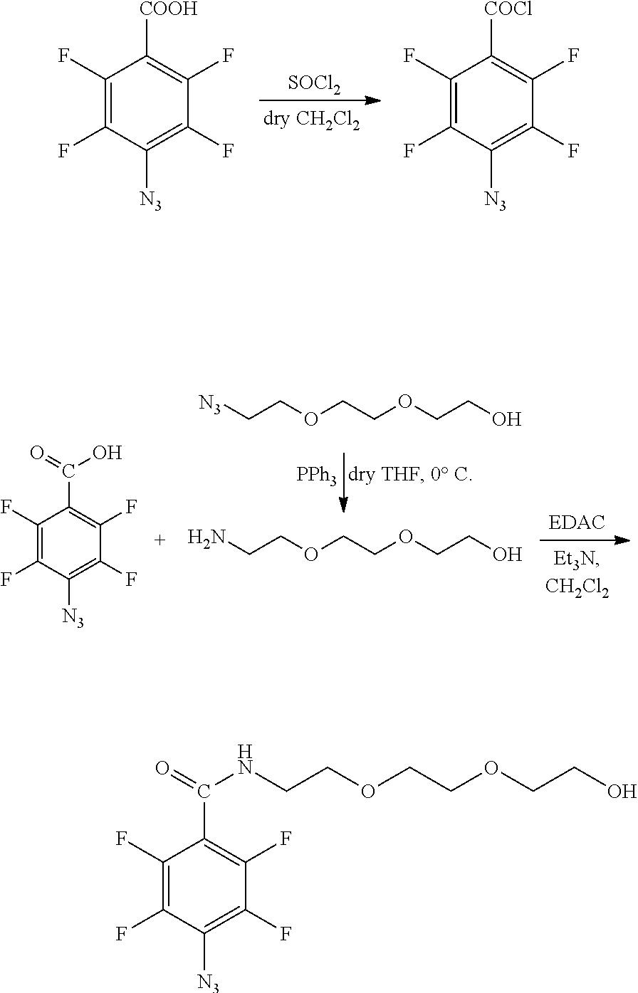 Figure US20100028559A1-20100204-C00006