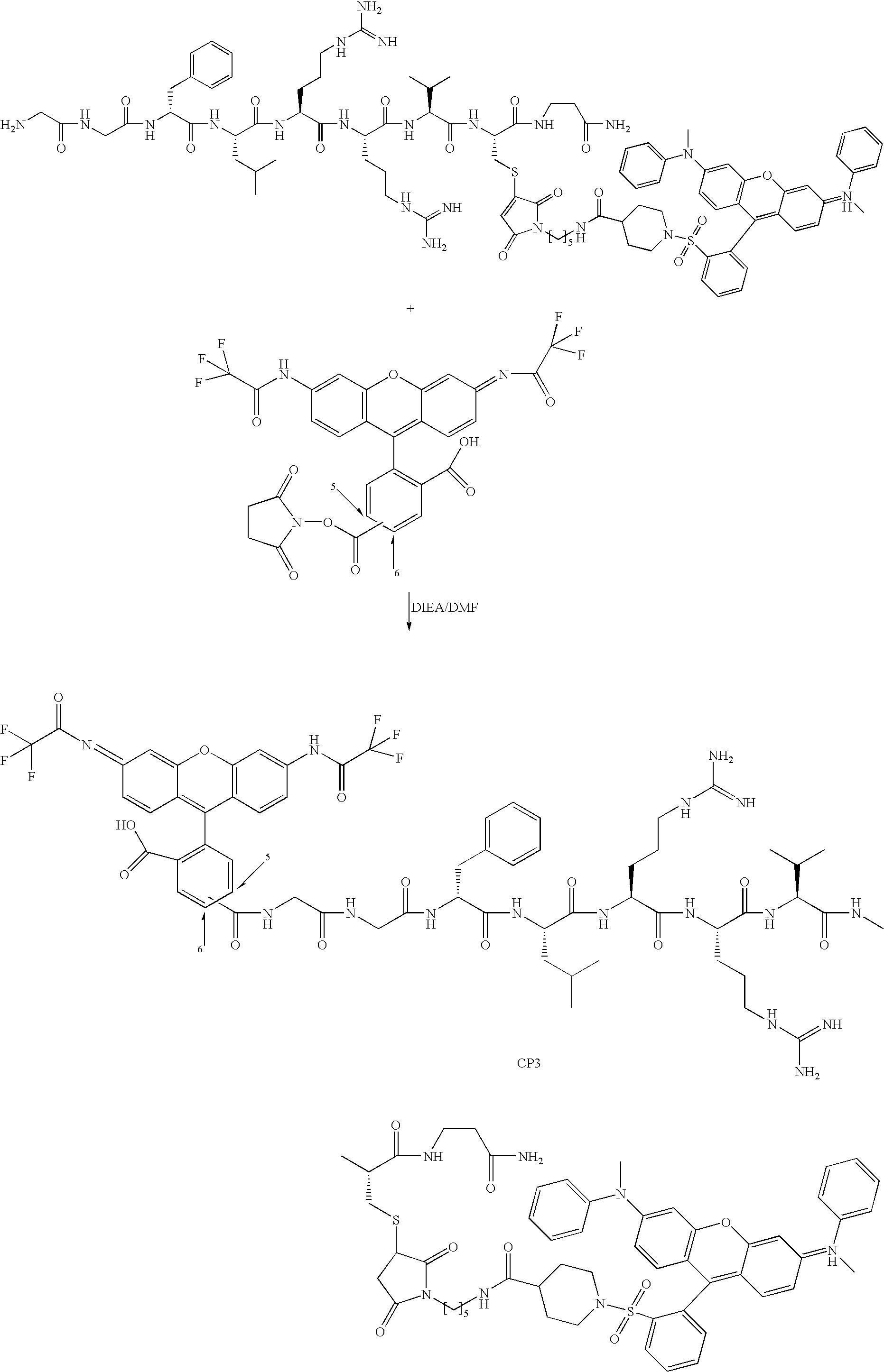 Figure US06991916-20060131-C00003