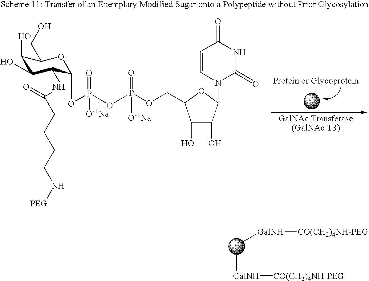 Figure US09187532-20151117-C00068