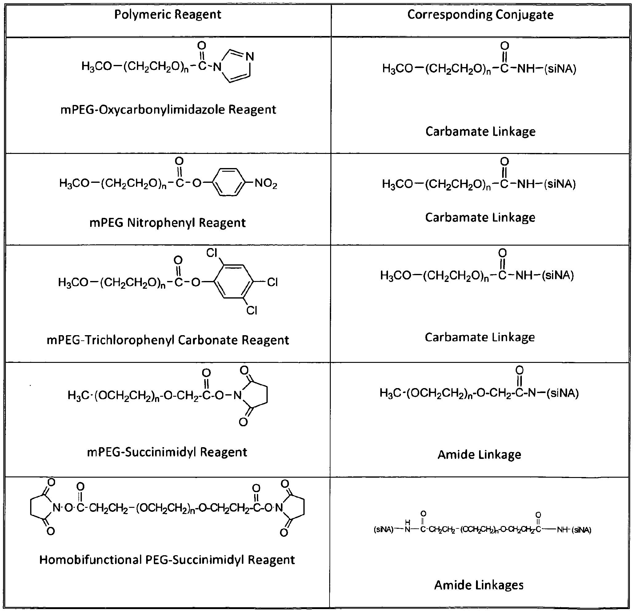 Wo2010021720a1 Conjugates Of Small Interfering Nucleic Acids