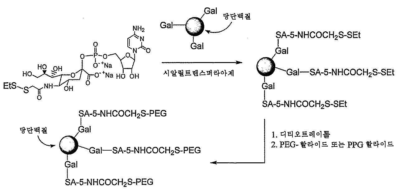 Figure 112009081596686-pct00169