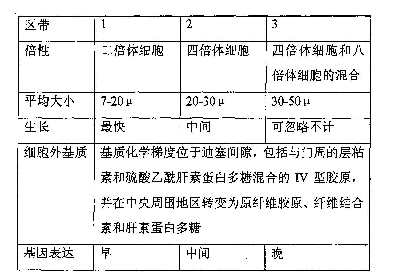 Figure CN1351656BD00061
