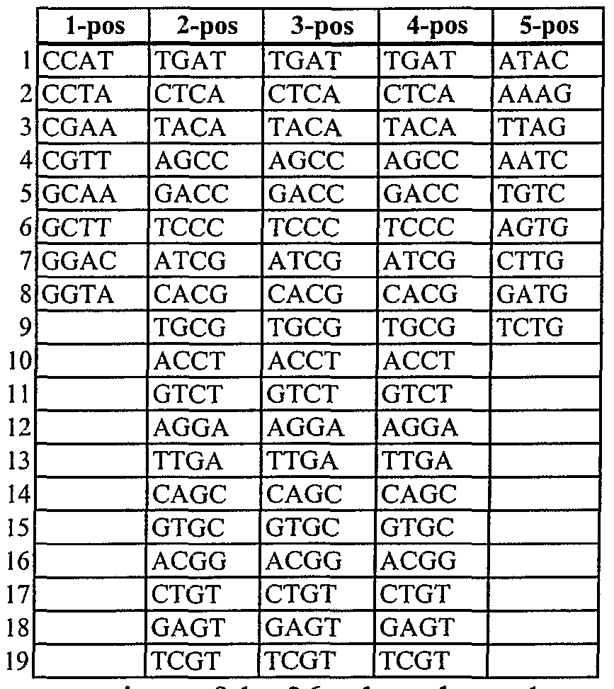 WO2007086935A2 - Methods of amplifying and sequencing