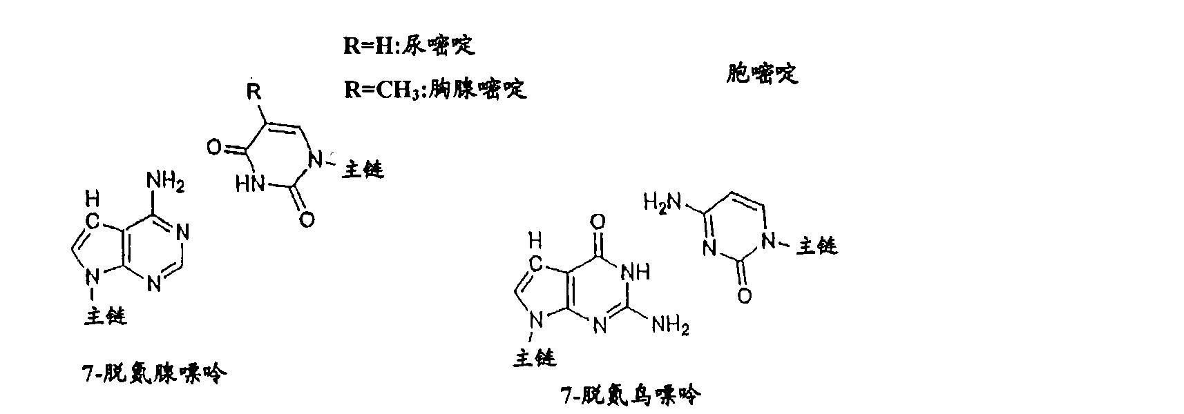 Figure CN101006177BD00213