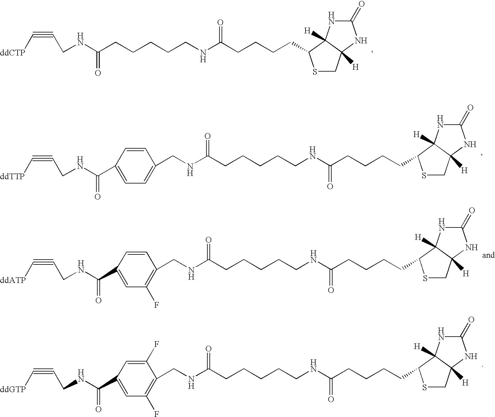 Figure US20030027140A1-20030206-C00014