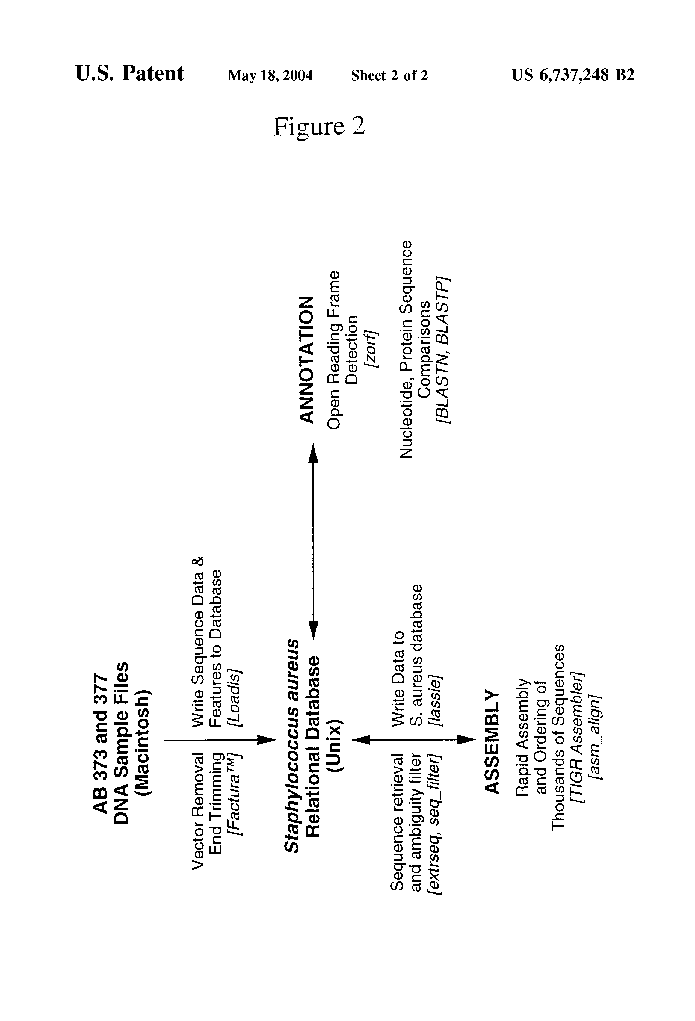 US6737248B2 - Staphylococcus aureus polynucleotides and