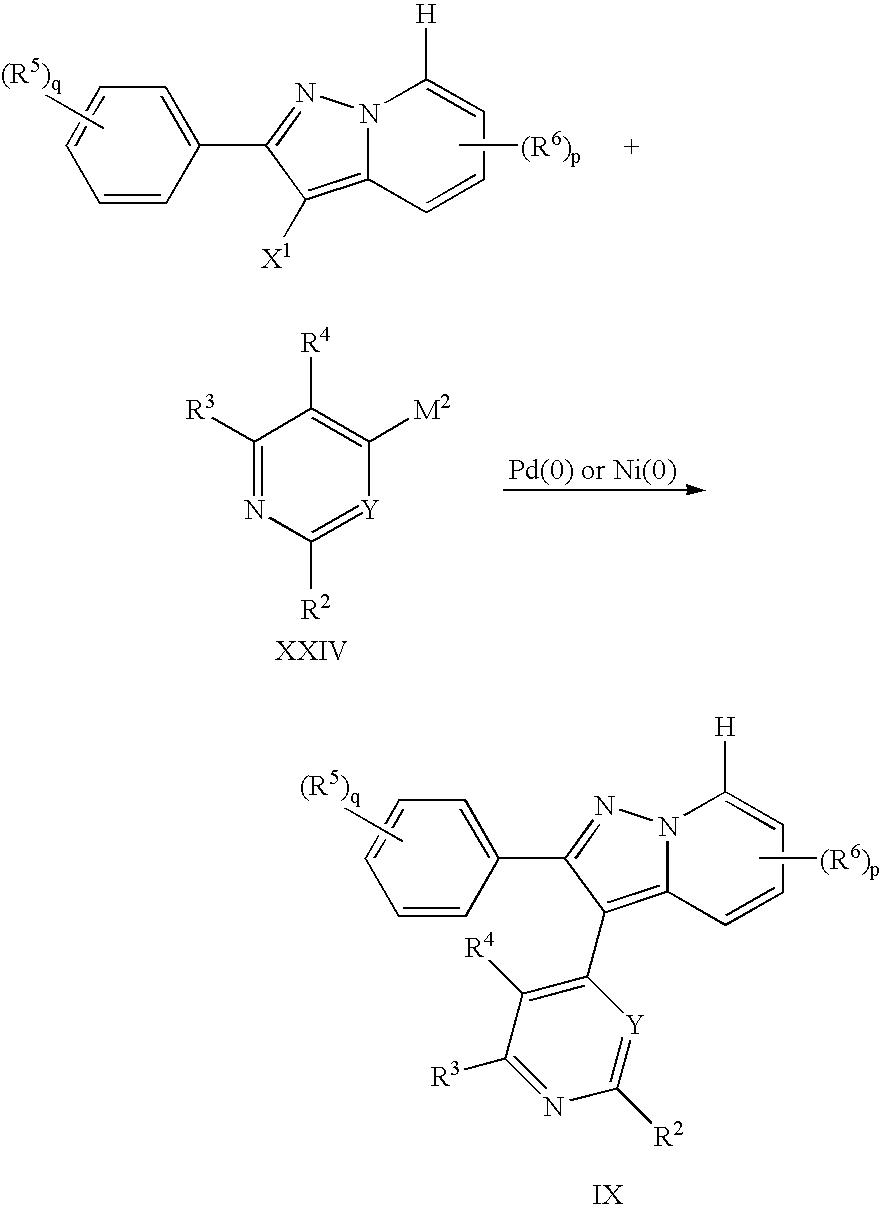 Figure US20050192295A1-20050901-C00052
